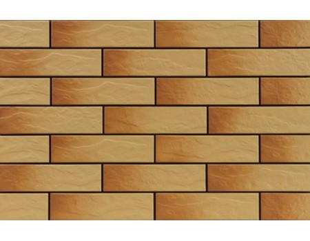 Gobi 9768 Фасадная плитка 24,5х6,5х0,65 Rustic/структурная