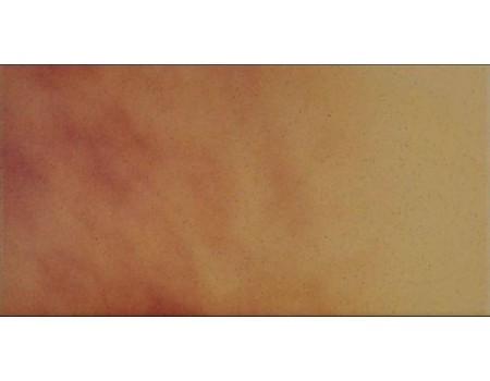 Jesienny Lisc/Autumn Leaf 7177/6606 Плитка напольная(подступенник) 30,0х14,8х0,11